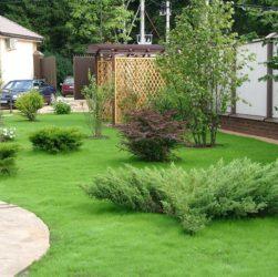 Как распланировать сад на участке