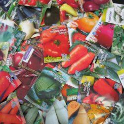 Семена и их подготовка к посеву